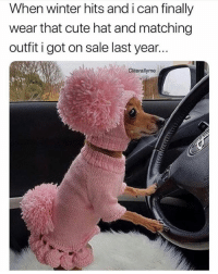 Cute, Memes, and Winter: When winter hits and i can finally  wear that cute hat and matching  outfit i got on sale last year...  Cliterallyme