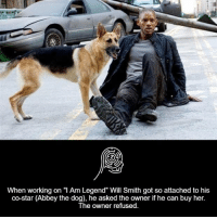 """Dogs, Memes, and Will Smith: When working on """"I Am Legend"""" Will Smith got so attached to his  co-star (Abbey the dog), he asked the owner if he can buy her.  The owner refused."""