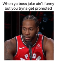 Got to do whatever it takes😂 nbamemes nba kawhi (Via ‪KingJosiah54‬-Twitter): When ya boss joke ain't funny  but you tryna get promoted  Sun Life  0 Got to do whatever it takes😂 nbamemes nba kawhi (Via ‪KingJosiah54‬-Twitter)