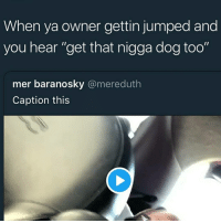 """Memes, Jumped, and 🤖: When ya owner gettin jumped and  you hear """"get that nigga dog too""""  mer baranosky @mereduth  Caption this"""