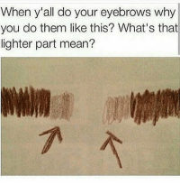 Me with my brows 😭 update : some of y'all getting defensive but I love it - koko: When y'all do your eyebrows why  you do them like this? What's that  lighter part mean? Me with my brows 😭 update : some of y'all getting defensive but I love it - koko
