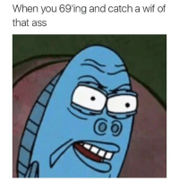 Ass, Funny, and Memes: When you 69'ing and catch a wif of  that ass hell no to the no no no hell to the no