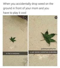 Eastside Atlanta, flyest nigga in the Waffle House (Follow @thetinderblog ): When you accidentally drop weed on the  ground in front of your mom and you  have to play it cool  @white peoplehumor  in MY GOOD CHRISTIAN SUBURBS  is that a marijuana Eastside Atlanta, flyest nigga in the Waffle House (Follow @thetinderblog )
