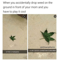 guys im doing a shoutout in like 2 minutes if it doesnt interest you then just skip past i just still owe them one and i forgot about it: When you accidentally drop weed on the  ground in front of your mom and you  have to play it cool  @whitepeoplehumor  in MY GOOD CHRISTIAN SUBURBS  is that a marijuana guys im doing a shoutout in like 2 minutes if it doesnt interest you then just skip past i just still owe them one and i forgot about it