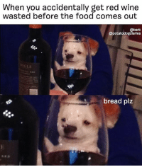 NEED A CARBLOAF NOW PLS 🍞 . . @potatodogdiaries: When you accidentally get red wine  wasted before the food comes out  @bark  @potatodogdlarles  bread plz NEED A CARBLOAF NOW PLS 🍞 . . @potatodogdiaries