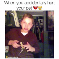 Memes, Prank, and 🤖: When you accidentally hurt  your pet  ownage Pranks.com TURN THAT SOUND ON 😂 omg  Like our page for MORE funny videos! (Original video credit: @EmilyZentz on Twitter)