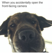 Front Face Camera: When you accidentally open the  front-facing camera