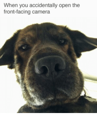 (via: http://bit.ly/2e1HhAe): When you accidentally open the  front-facing camera (via: http://bit.ly/2e1HhAe)