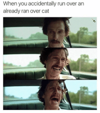 @friend_of_bae is one of the best meme makers of all time: When you accidentally run over an  already ran over cat @friend_of_bae is one of the best meme makers of all time