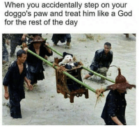 God, Memes, and 🤖: When you accidentally step on your  doggo's paw and treat him like a God  for the rest of the day Follow @bigmike if you've ever smoked before 😙💨