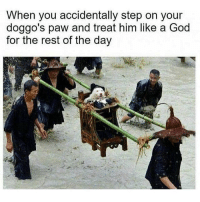God, Dank Memes, and Rest: When you accidentally step on your  doggo's paw and treat him like a God  for the rest of the dav King