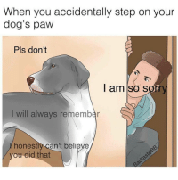Forgive me doggo 😢 (via @haaaofficial for the best memes) @badtastebb: When you accidentally step on your  dog's paw  Pls don't  I am so sorr  I will always remember  honest  can't believe  you did that Forgive me doggo 😢 (via @haaaofficial for the best memes) @badtastebb