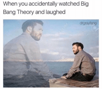 Big Bang Theory: When you accidentally watched Big  Bang Theory and laughed  drgrayfang
