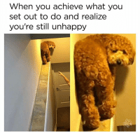 MeIRL, Set, and You: When you achieve what you  set out to do and realize  you're still unhappy meirl