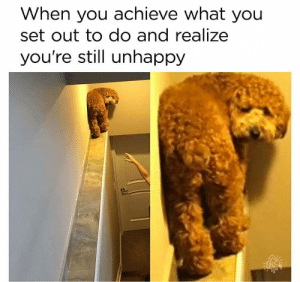 Dank, Memes, and Target: When you achieve what you  set out to do and realize  you're still unhappy meirl by the_rad_pourpis MORE MEMES