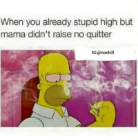 Memes, 🤖, and Mama: When you already stupid high but  mama didn't raise no quitter  IG:@nochill