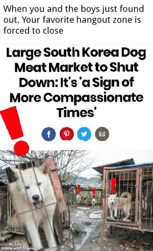 Doge, South Korea, and Boys: When you and the boys just found  out. Your favorite hangout zone is  forced to close  Large South Korea Dog  Meat Market to Shut  Down: It's 'a Sign of  More Compassionate  Times'  fp  made with mematic Make a smart investment with the *New* surprised Doge format