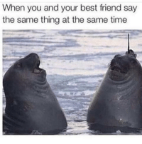 AYYYY: When you and your best friend say  the same thing at the same time AYYYY