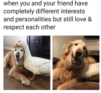 Best of friends: when you and your friend have  completely different interests  and personalities but still love &  respect each other Best of friends