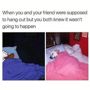 Sleep over everything: When you and your friend were supposed  to hang out but you both knew it wasn't  going to happen Sleep over everything