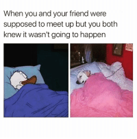 Kardashians, Memes, and 🤖: When you and your friend were  supposed to meet up but you both  knew it wasn't going to happen 😂😂lmao - - - - - - - - text post textpost textposts relatable comedy humour funny kyliejenner kardashians hiphop follow4follow f4f kanyewest like4like l4l tumblr tumblrtextpost imweak lmao justinbieber relateable lol hoeposts memesdaily oktweet funnymemes hiphop bieber trump