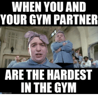 It's a hard knock life.: WHEN YOU AND  YOUR GYM PARTNER  ARE THE HARDEST  IN THE GYM  memegen com It's a hard knock life.