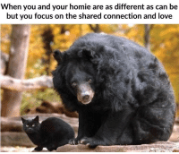 Homie, Love, and Focus: When you and your homie are as different as can be  but you focus on the shared connection and love Different but the same