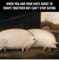 When your winter body is good to go during summertime - 9gag summer: WHEN YOU AND YOUR MATE AGREE TO  SHAPE TOGETHER BUT CAN'T STOP EATING When your winter body is good to go during summertime - 9gag summer
