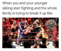 Family, Memes, and Wrestling: When you and your younger  sibling start fighting and the whole  family is trying to break it up like Yo I remember hitting wrestling moves on the trampoline to all the other kids at my family parties 💀 kevinowens chrisjericho romanreigns braunstrowman sethrollins ajstyles deanambrose randyorton braywyatt jindermahal baroncorbin charlotte samoajoe shinsukenakamura samizayn johncena sashabanks brocklesnar bayley alexabliss themiz finnbalor kurtangle greatballsoffire wwememes wwememe wwefunny wrestlingmemes wweraw wwesmackdown