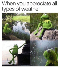 Memes, Appreciate, and Weather: When you appreciate all  types of weather https://t.co/RGq0OGx7el