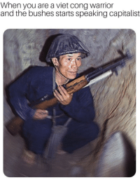 Soon..., Capitalist, and Warrior: When you are a viet cong warrior  and the bushes starts speaking capitalist Last known photograph of Viet Cong soldier. He died in an ambush by US Troops soon after this. (1969)