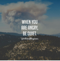 "Memes, Revenge, and Arrogant: WHEN YOU  ARE ANGRY  BE QUIET  ardemejilepieas The Messenger of Allah (peace and blessings of Allah be upon him) said: ""If any of you becomes angry, let him keep silent."" (Reported by Imam Ahmad, al-Musnad, 1-329) - ""...anger is placed in the nature of a human being so as to keep harm away from himself and so that he can take revenge from the one who harms him. However, what is detested is excessive anger, as it disturbs one's soundness, makes one imbalanced and immoderate, such a person starts making wrong decisions which may even affect he who is angry more than the person he is angry at. - Anger is heat that spreads when something provokes one's anger, it makes the blood of desire boil to take revenge, and may even cause a fever. The main reason for anger is usually arrogance, for a person is never angry at anyone who is higher than him. That said, the cure for this is that the angry person changes his state; if he is talking he should be silent, if he is standing he should sit, and if he is sitting he should lie down, so that he may calm down. If he leaves the place immediately and leaves the one he is angry at, it would be better. (In reference of the Sahih Hadith found in Abi Dawud, 4782) - If an angry person does not become calm when his anger peaks, he may harm himself or the person he is angry at and he would certainly regret any actions he may take take afterwards. - To cure this disease one should envisage what he looks like when he is angry and what he looks like when he is calm. This is when he will know that anger is a state of insanity and immoderation. If he does that then he will see the ugliness of what he was about to do and therefore he will leave it."" - 📕(Disciplining the Soul, Ibn al Jawzi, Page 51, 53-54)‎ @gardenofthepious"