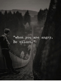 """Angry, You, and When You: """"when you are angry,  Be silent."""""""