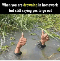 9gag, Fail, and Memes: When you are drowning in homework  but still saying yes to go out Wait for me, almost ready. Follow @9gag to laugh more. 9gag school grades fail