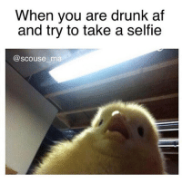 Me trying to focus with one eye shut 😭 get following @scouse_ma @scouse_ma @scouse_ma @scouse_ma: When you are drunk af  and try to take a selfie  @scouse ma Me trying to focus with one eye shut 😭 get following @scouse_ma @scouse_ma @scouse_ma @scouse_ma