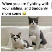 Relatable, Mom, and Haha: When you are fighting with  your sibling, and Suddenly  mom come Relatable 10/10 haha