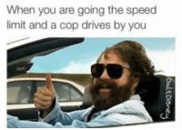Memes, 🤖, and Speed: When you are going the speed  limit and a cop drives by you https://t.co/avFjILlQ1l