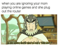 Games, Router, and Mom: when you are ignoring your mom  playing online games and she plug  out the router  n bird culture that iswhat we call a DICKMOVENKLAND