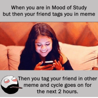 Twitter: BLB247 Snapchat : BELIKEBRO.COM belikebro sarcasm meme Follow @be.like.bro: When you are in Mood of Study  but then your friend tags you in meme  Then you tag your friend in other  meme and cycle goes on for  the next 2 hours. Twitter: BLB247 Snapchat : BELIKEBRO.COM belikebro sarcasm meme Follow @be.like.bro