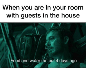 Food, House, and Water: When you are in your room  with guests in the house  Food and water ran out 4 days ago me_irl