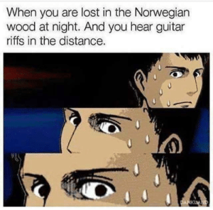 Lost, Guitar, and Norwegian: When you are lost in the Norwegian  wood at night. And you hear guitar  riffs in the distance.
