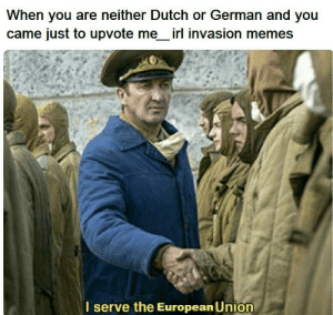 me irl: When you are neither Dutch or German and you  came just to upvote me irl invasion memes  serve the European Union me irl