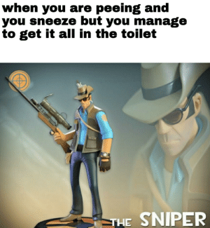 Reddit, Relatable, and Sniper: when you are peeing and  you sneeze but you manage  to get it al in the toilet  THE SNIPER Sadly, not relatable