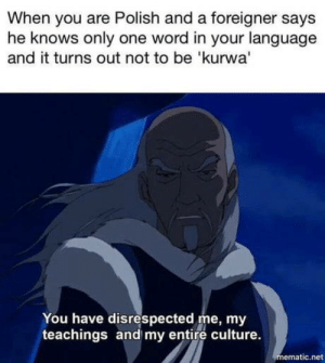 Word, Only One, and Net: When you are Polish and a foreigner says  he knows only one word in your language  and it turns out not to be 'kurwa'  You have disrespected me, my  teachings and my entire culture.  mematic.net Kurvva!