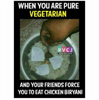 Memes, 🤖, and Options: WHEN You ARE PURE  VEGETARIAN  RvCJ  WWWW. RVCJ.COM  AND YOUR FRIENDS FORCE  You TO EAT CHICKEN BIRYANI Faadu option hai bhai..😂😂 rvcjinsta