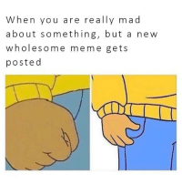 Really Mad: When you are really mad  about something, but a new  wholesome meme gets  posted