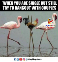 Indianpeoplefacebook, Single, and You: WHEN YOU ARE SINGLE BUT STILL  TRY TO HANGOUT WITH COUPLES  LAUGHING  Colowrs