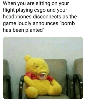 "Dank, Memes, and Nas: When you are sitting on your  flight playing csgo and your  headphones disconnects as the  game loudly announces ""bomb  nas been planted AaAHhhH by Hahahahahahahahaha55 MORE MEMES"