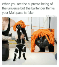 Memes, Bartending, and 🤖: When you are the supreme being of  the universe but the bartender thinks  your Multipass is fake  @chaos reigns Leeloo Dallas Multipass (kitty cosplay by @comicbookgirl19 🐱- dumb joke by me @chaos.reigns_)