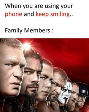 Family, Meme, and Phone: When you are using your  phone and keep smiling.  Family Members Meme Battle: Guys, can you relate?